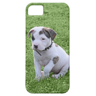 T-Osso do pitbull do filhote de cachorro Capas Para iPhone 5