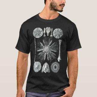 T-shirt de Echinidea Camiseta