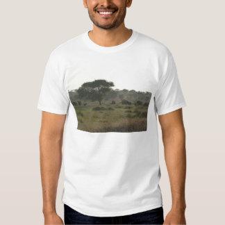 T-shirt dos elefantes, coleção africana do safari