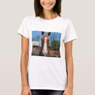 T-shirt meu cavalo do animal de estimação