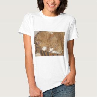 Taco o gato do Siesta T-shirts