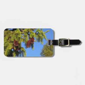 Tag da bagagem da foto da floresta da natureza com tags de mala