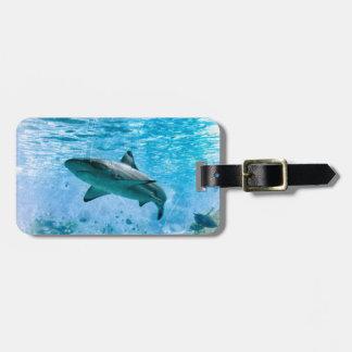 Tag da bagagem do tubarão do vintage etiqueta de mala