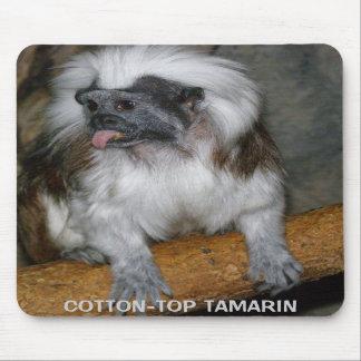TAMARIN de COTTON-TOP, mousepad