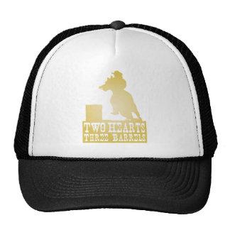 tambor que compete o cavalo do campónio da vaqueir boné