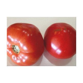 Tapeçaria das canvas do tomate