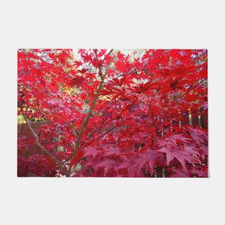 Tapete Árvore de bordo vermelho