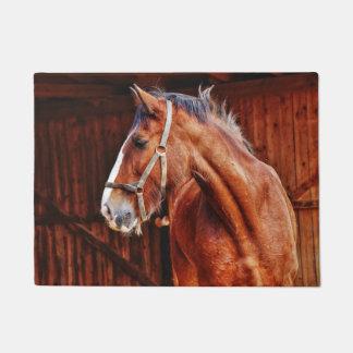 Tapete Cavalo no estábulo