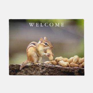 Tapete Chipmunk que come um amendoim