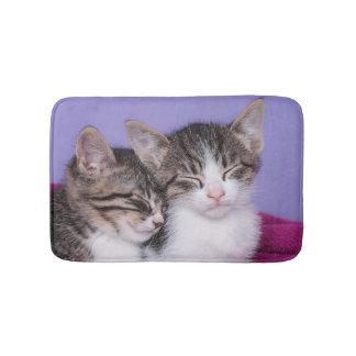 Tapete De Banheiro Dois gatinhos bonitos que Napping