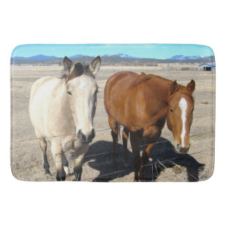 Tapete De Banheiro Esteira de banho de dois cavalos