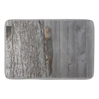 Tapete De Banheiro Esteira de banho do esquilo