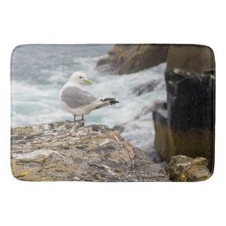 Tapete De Banheiro esteira litoral da gaivota