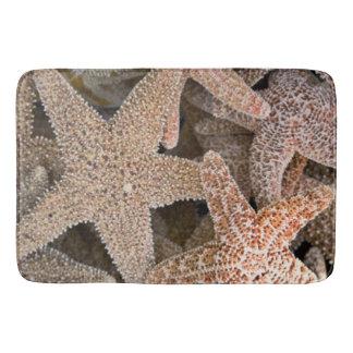 Tapete De Banheiro Estrela do mar toda ao redor