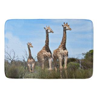 Tapete De Banheiro Família do girafa na cume gramínea