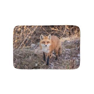 Tapete De Banheiro Fim do Fox vermelho acima e pessoal