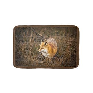 Tapete De Banheiro fox a esteira de banho, acessórios do banheiro da