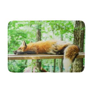 Tapete De Banheiro fox a esteira de banho, esteira foxy, decoração