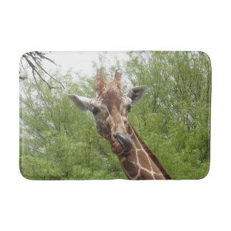 Tapete De Banheiro Girafa que lambe seu nariz