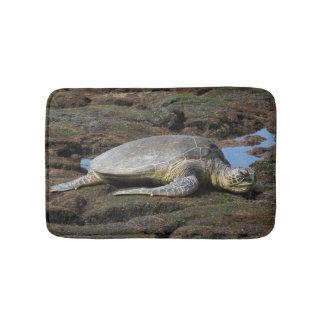 Tapete De Banheiro Honu que descansa nas rochas mornas