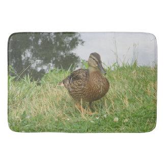 Tapete De Banheiro Pato fêmea do pato selvagem