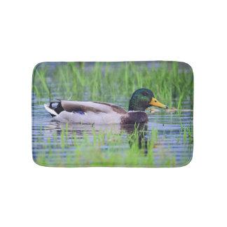 Tapete De Banheiro Pato masculino do pato selvagem que flutua na água