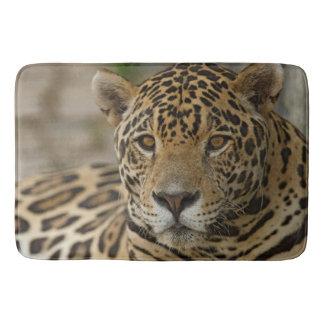 Tapete De Banheiro Retrato felino de Jaguar