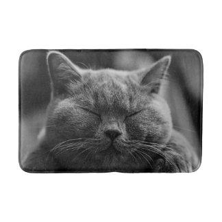 Tapete De Banheiro Tiro cinzento Napping da cabeça do gato