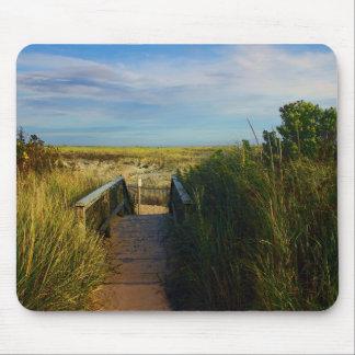 Tapete do rato de Cape Cod: O trajeto à praia de Mousepad