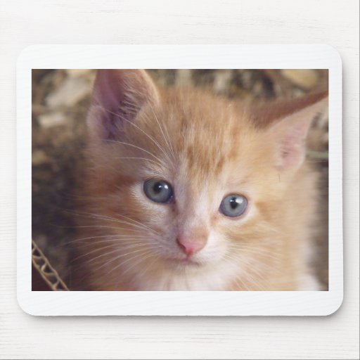 Tapete do rato de Garfield do bebê Mousepad
