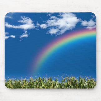 Tapete do rato do verão do arco-íris mousepads