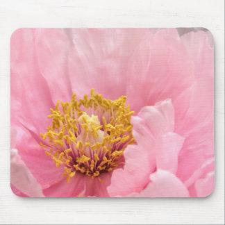 Tapete do rato: Peônia cor-de-rosa da árvore Mousepad