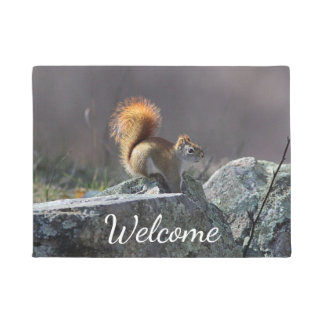 Tapete Esquilo vermelho