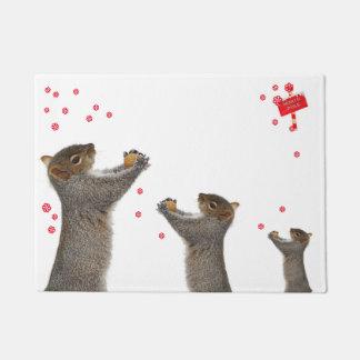 Tapete esteira esquilo
