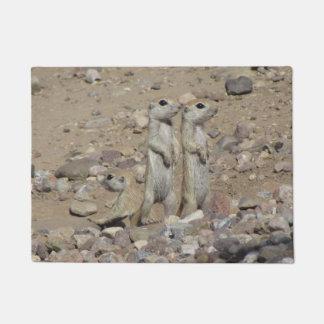 Tapete família Redondo-atada do esquilo à terra
