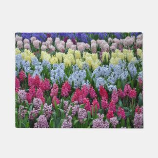 Tapete Flores coloridas do jacinto