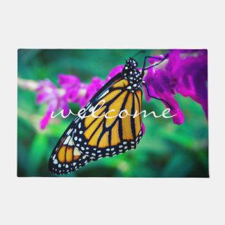 Tapete Foto alaranjada colorida da borboleta de monarca