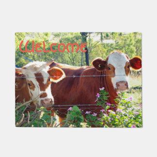 Tapete Foto bonito das bezerras do gado da vaca de