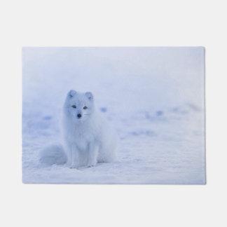 Tapete Fox ártico de Islândia