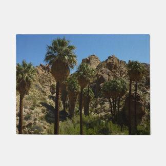 Tapete Oásis perdidos das palmas mim no parque nacional