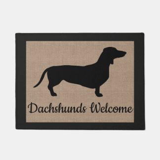 Tapete Os Dachshunds dão boas-vindas à serapilheira do