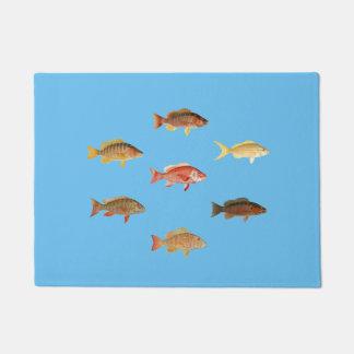 Tapete Peixes coloridos da caranga