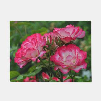 Tapete Rosas cor-de-rosa