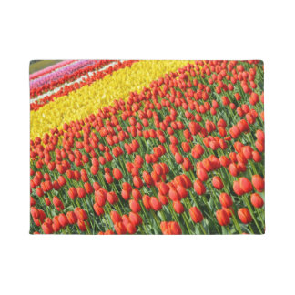 Tapete Tulipas coloridas do primavera