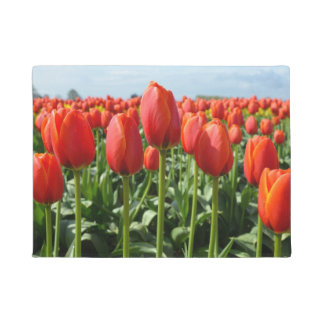 Tapete Tulipas do primavera vermelho
