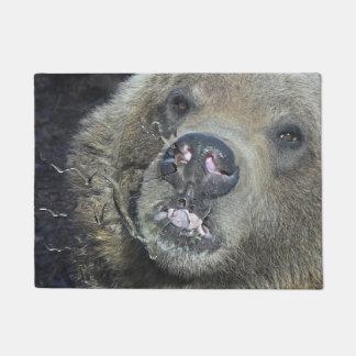 Tapete Urso engraçado Cub do urso que lambe a janela de