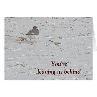 Tarambola tranqüila adeus do cartão do grupo