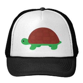 tartaruga bonito do bebê boné