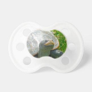 tartaruga chupeta de bebê