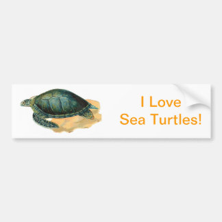 Tartaruga de mar adesivo para carro